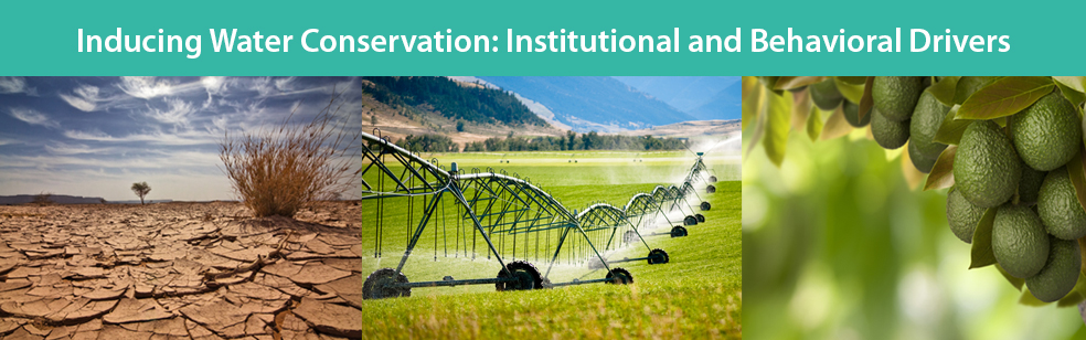 Inducing Water Conservation in Agriculture: Institutional and Behavioral Drivers