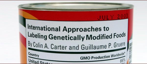 against genetically modified foods essay