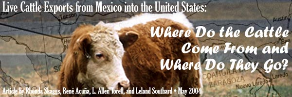 Choices Article Live Cattle Exports From Mexico Into The