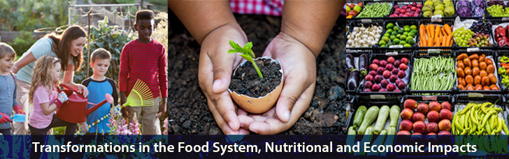 Transformations in the Food System, Nutritional and Economic Impacts