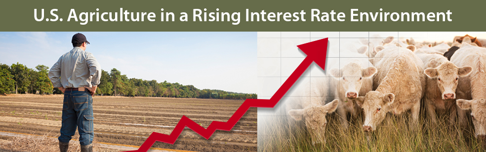 Will Rising Interest Rates Lead to Intensifying Risks for Agriculture?