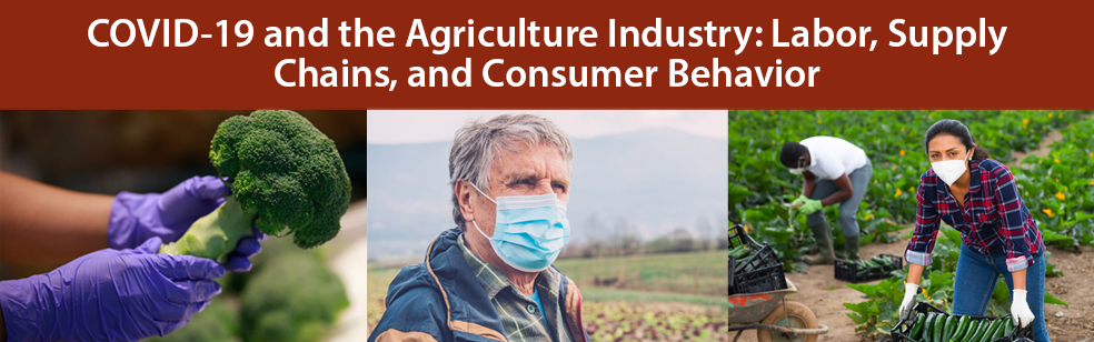 COVID-19 and the Agriculture Industry: Labor, Supply Chains, and Consumer Behavior