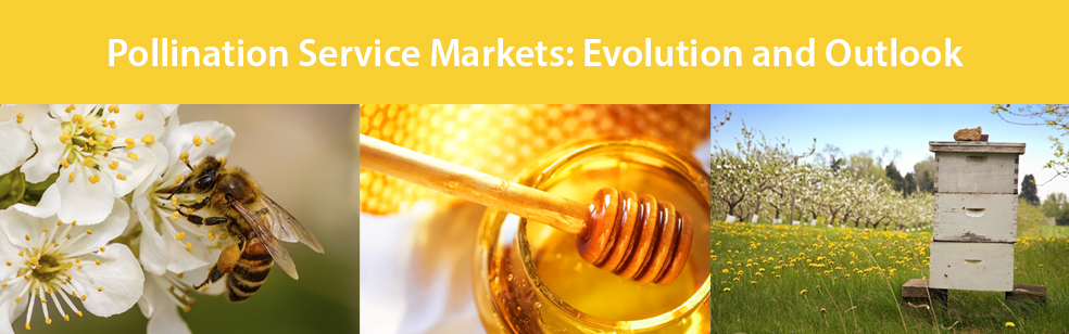 Pollination Service Markets: Evolution and Outlook