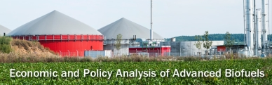 Economic and Policy Analysis of Advanced Biofuels