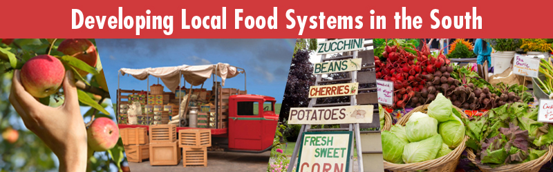 Developing Local Food Systems in the South