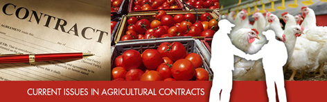 Current Issues in Agricultural Contracts