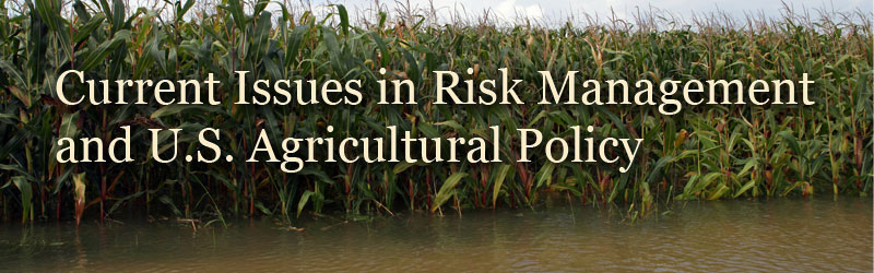 Current Issues in Risk Management and U.S. Agricultural Policy
